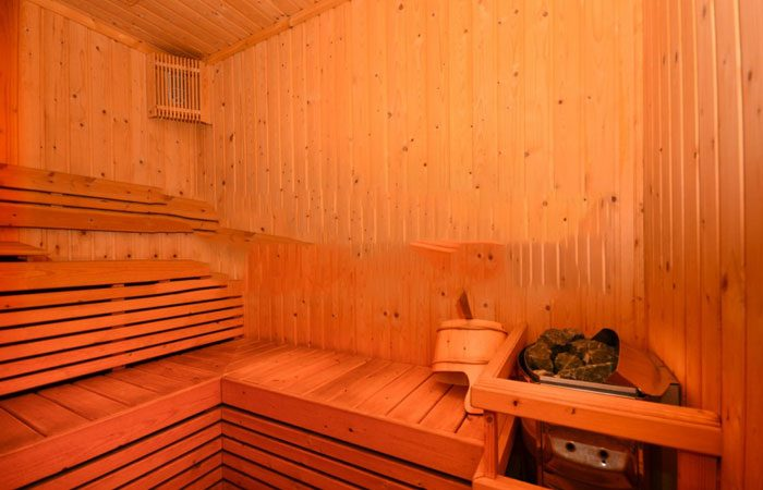 ideal-24-sauna-and-steam